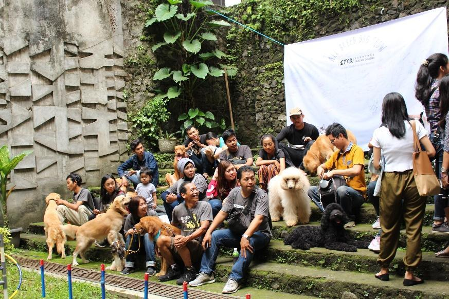 All-Breed Dog Show in Universitas Kristen Duta Wacana