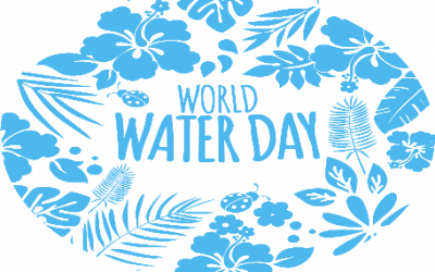 World Water Day : Nature for Water